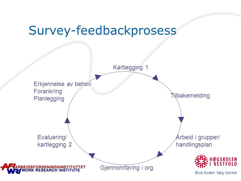 Survey-feedbackprosess