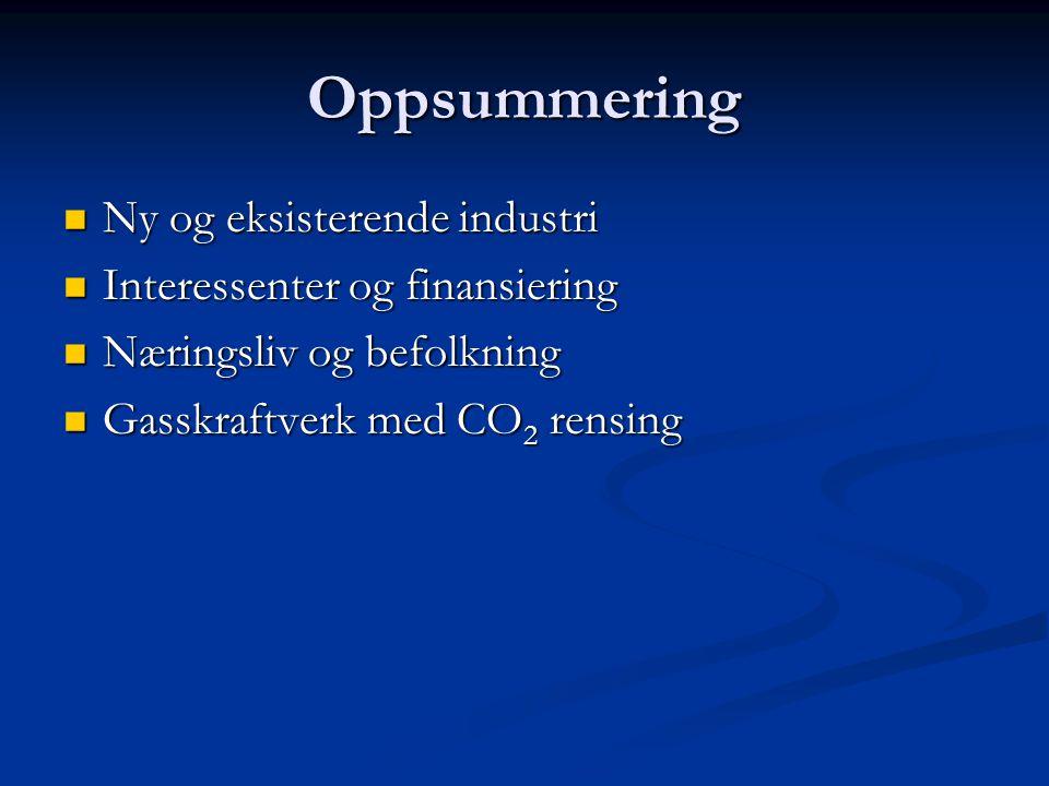 Oppsummering Ny og eksisterende industri Interessenter og finansiering