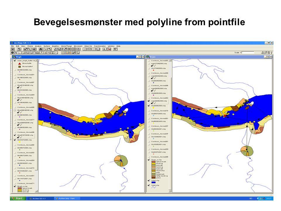 Bevegelsesmønster med polyline from pointfile