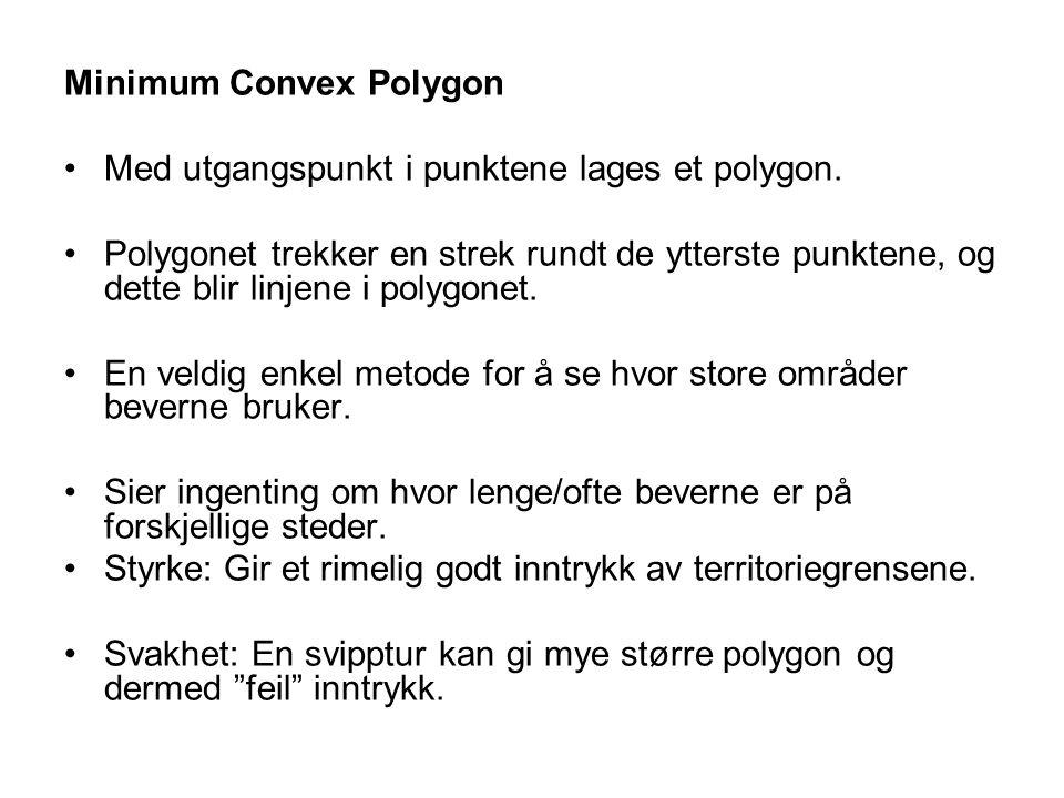 Minimum Convex Polygon