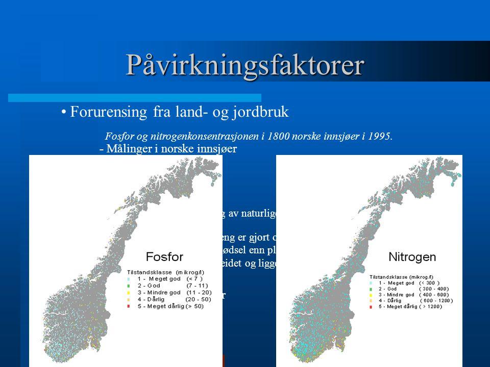 Fosfor og nitrogenkonsentrasjonen i 1800 norske innsjøer i 1995.