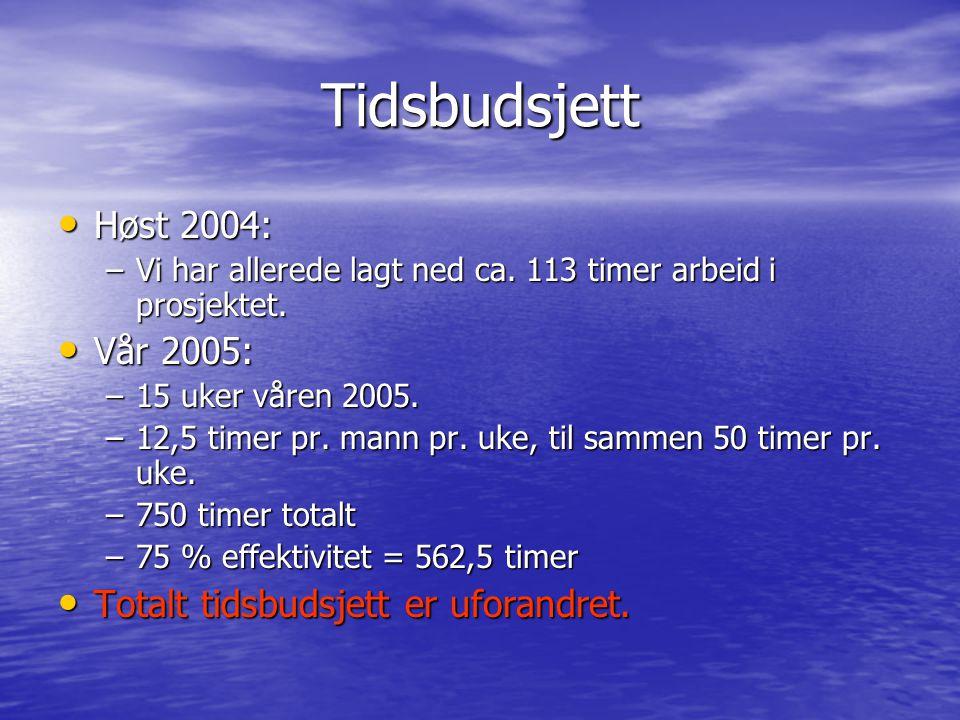 Tidsbudsjett Høst 2004: Vår 2005: Totalt tidsbudsjett er uforandret.