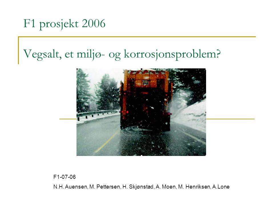 F1 prosjekt 2006 Vegsalt, et miljø- og korrosjonsproblem