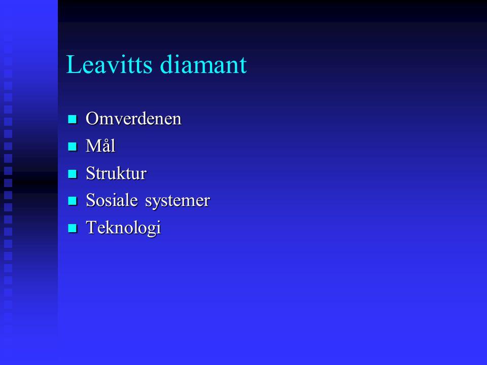 Leavitts diamant Omverdenen Mål Struktur Sosiale systemer Teknologi
