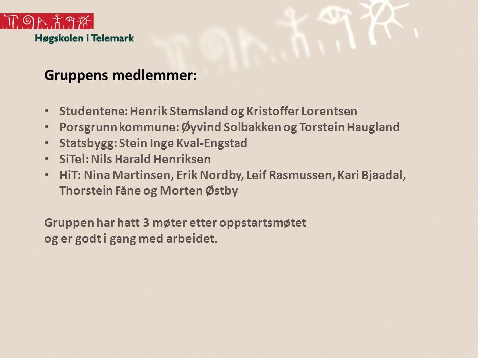 Gruppens medlemmer: Studentene: Henrik Stemsland og Kristoffer Lorentsen. Porsgrunn kommune: Øyvind Solbakken og Torstein Haugland.