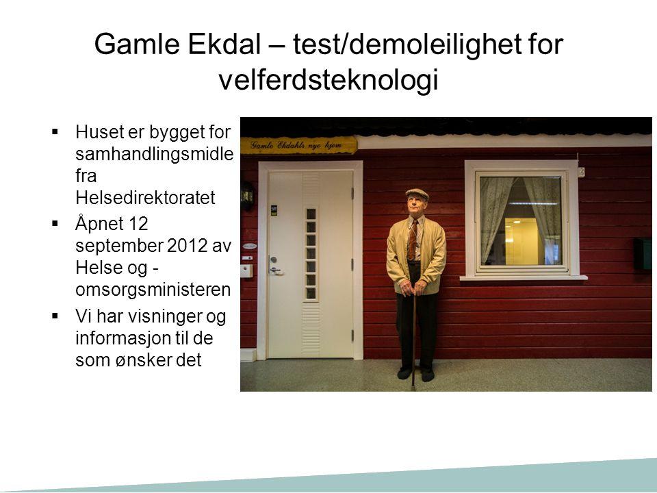 Gamle Ekdal – test/demoleilighet for velferdsteknologi