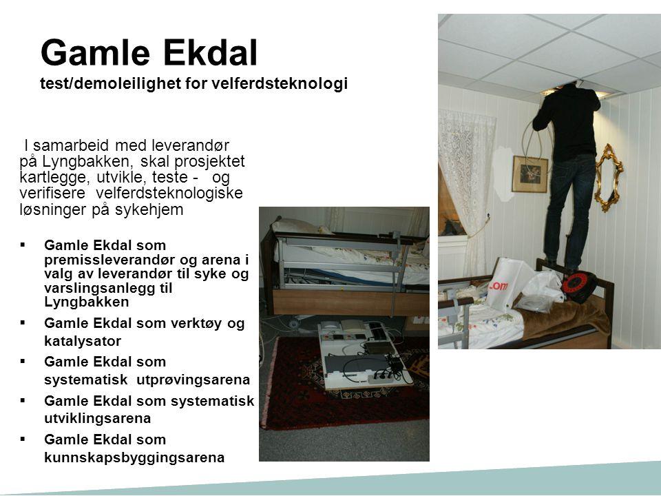 Gamle Ekdal test/demoleilighet for velferdsteknologi
