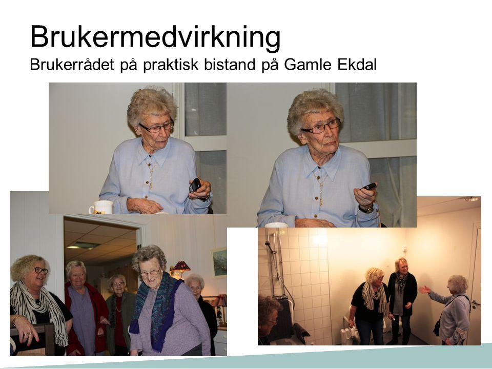 Brukermedvirkning Brukerrådet på praktisk bistand på Gamle Ekdal