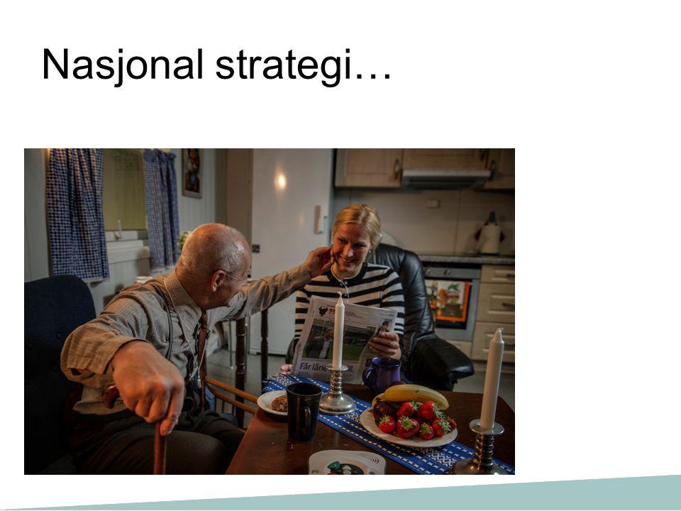 Nasjonal strategi…