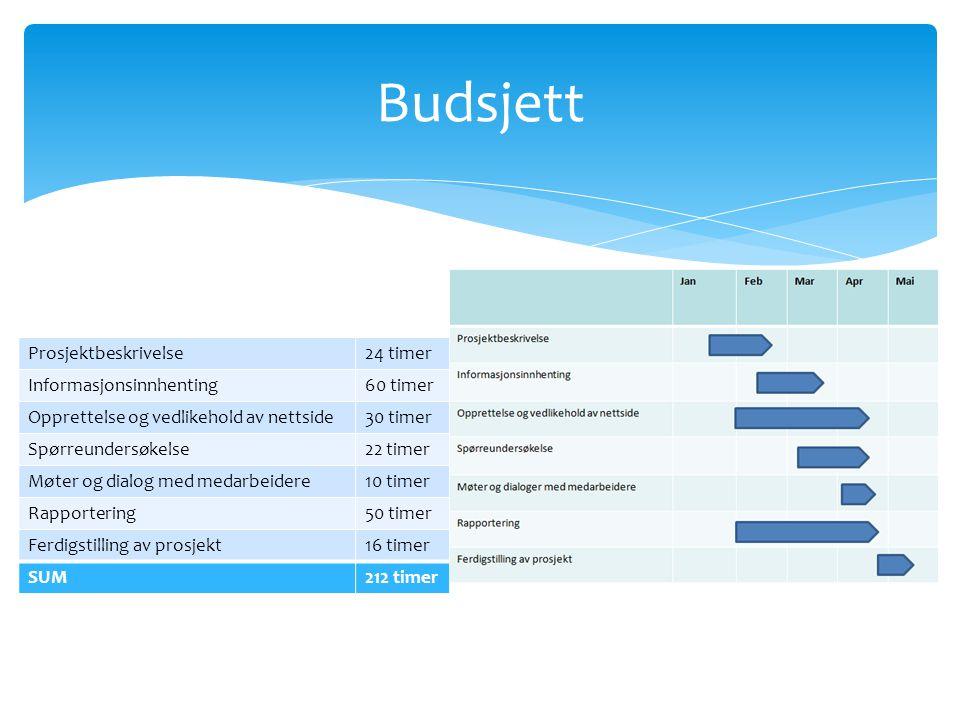 Budsjett Prosjektbeskrivelse 24 timer Informasjonsinnhenting 60 timer