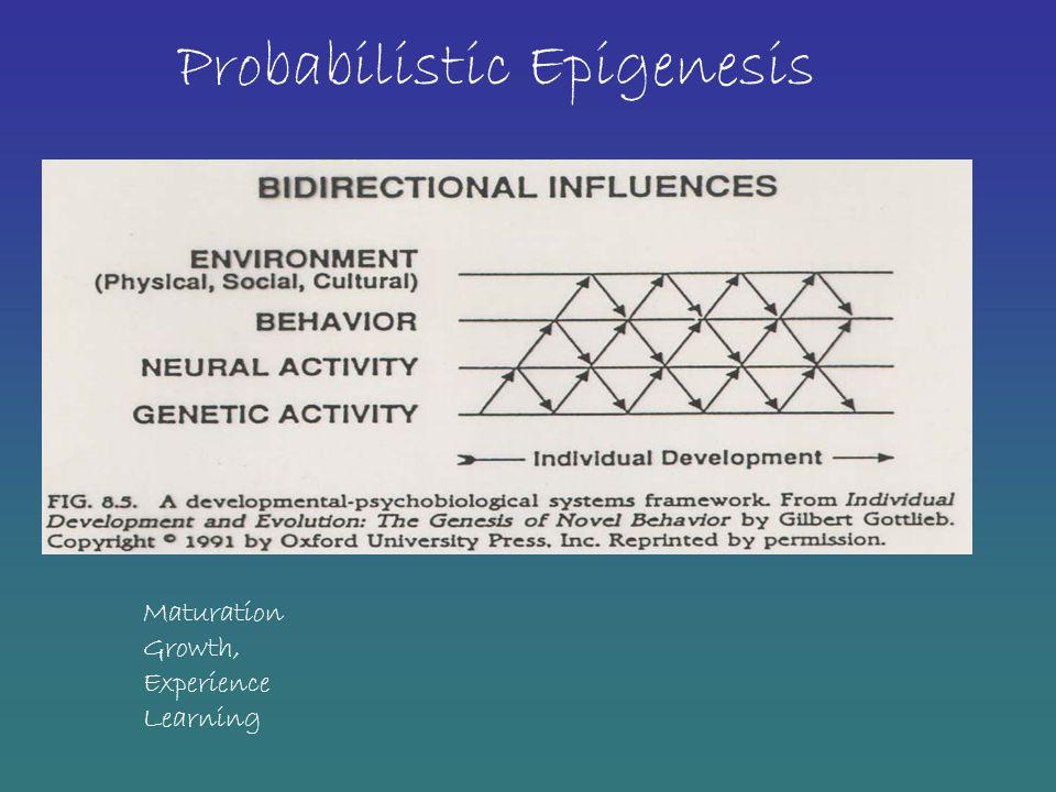 Probabilistic Epigenesis