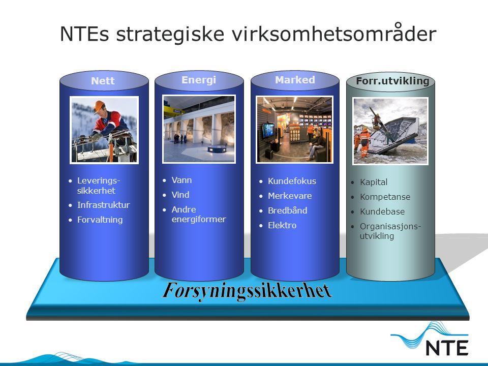 NTEs strategiske virksomhetsområder