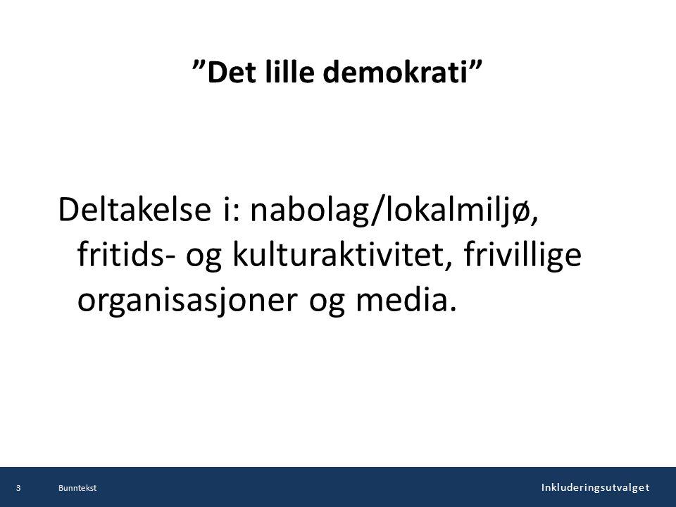 Det lille demokrati Deltakelse i: nabolag/lokalmiljø, fritids- og kulturaktivitet, frivillige organisasjoner og media.