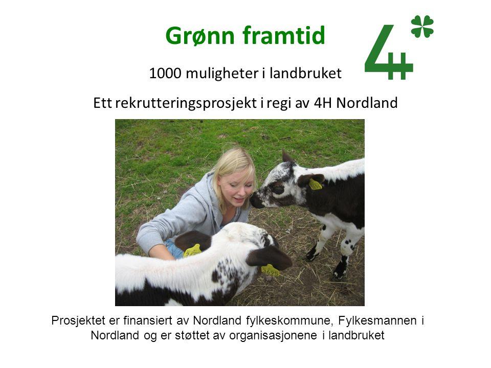 Grønn framtid 1000 muligheter i landbruket Ett rekrutteringsprosjekt i regi av 4H Nordland