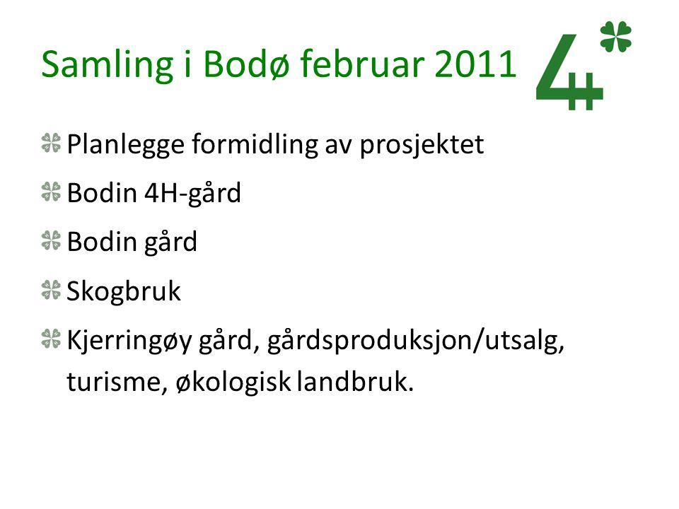 Samling i Bodø februar 2011 Planlegge formidling av prosjektet