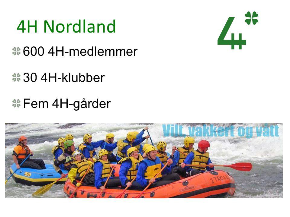 4H Nordland 600 4H-medlemmer 30 4H-klubber Fem 4H-gårder