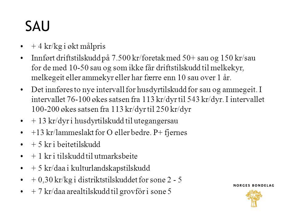 SAU + 4 kr/kg i økt målpris