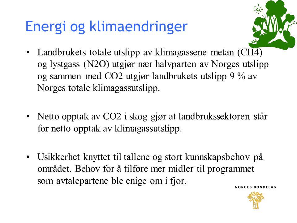 Energi og klimaendringer
