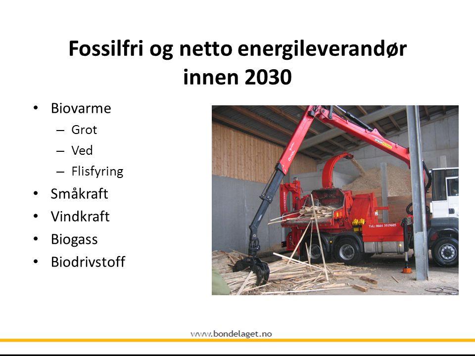 Fossilfri og netto energileverandør innen 2030