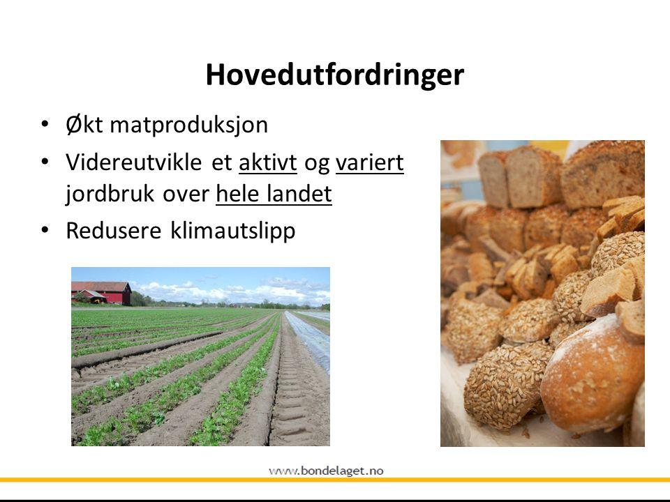 Hovedutfordringer Økt matproduksjon