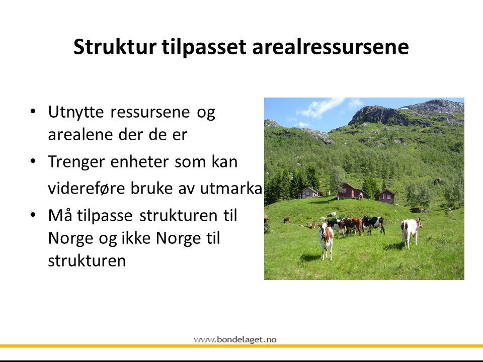 Struktur tilpasset arealressursene