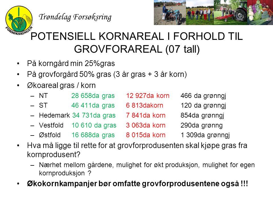 POTENSIELL KORNAREAL I FORHOLD TIL GROVFORAREAL (07 tall)