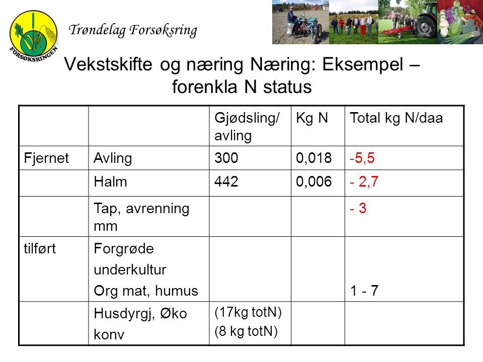 Vekstskifte og næring Næring: Eksempel – forenkla N status