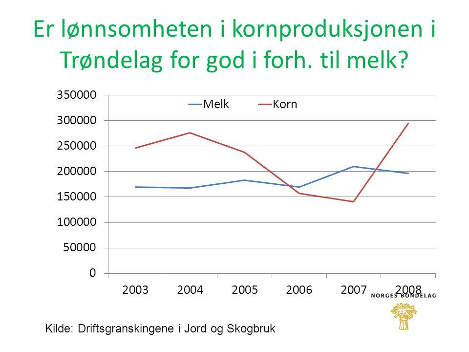 Er lønnsomheten i kornproduksjonen i Trøndelag for god i forh. til melk