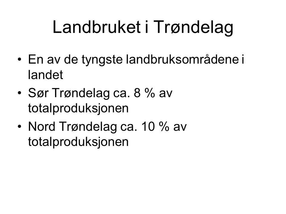 Landbruket i Trøndelag