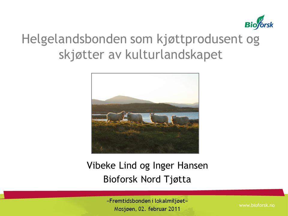 Helgelandsbonden som kjøttprodusent og skjøtter av kulturlandskapet
