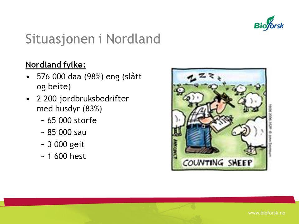 Situasjonen i Nordland