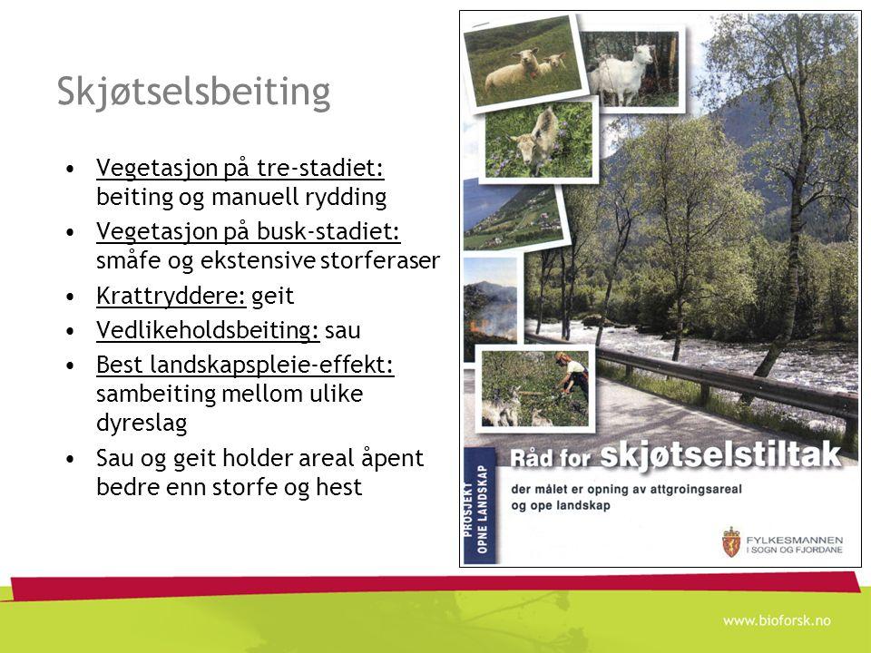 Skjøtselsbeiting Vegetasjon på tre-stadiet: beiting og manuell rydding