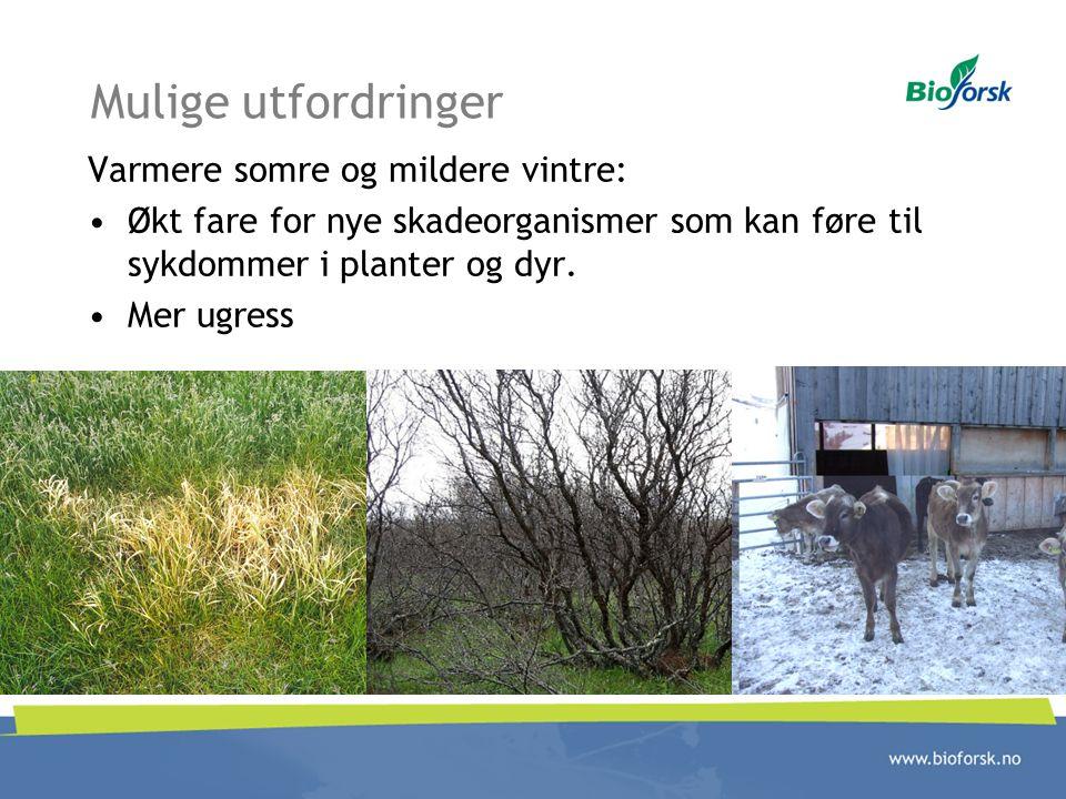 Mulige utfordringer Varmere somre og mildere vintre: