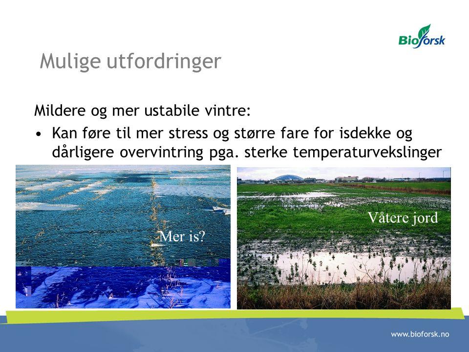 Mulige utfordringer Mildere og mer ustabile vintre: