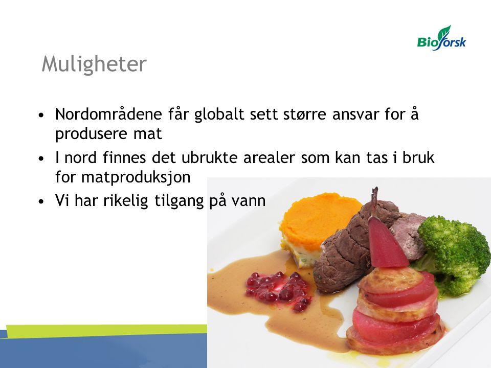 Muligheter Nordområdene får globalt sett større ansvar for å produsere mat. I nord finnes det ubrukte arealer som kan tas i bruk for matproduksjon.