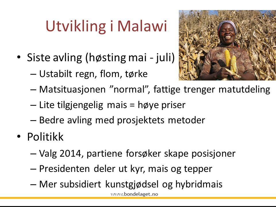 Utvikling i Malawi Siste avling (høsting mai - juli) Politikk