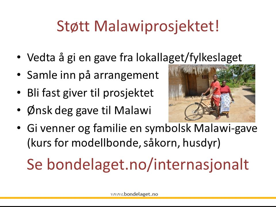 Støtt Malawiprosjektet!