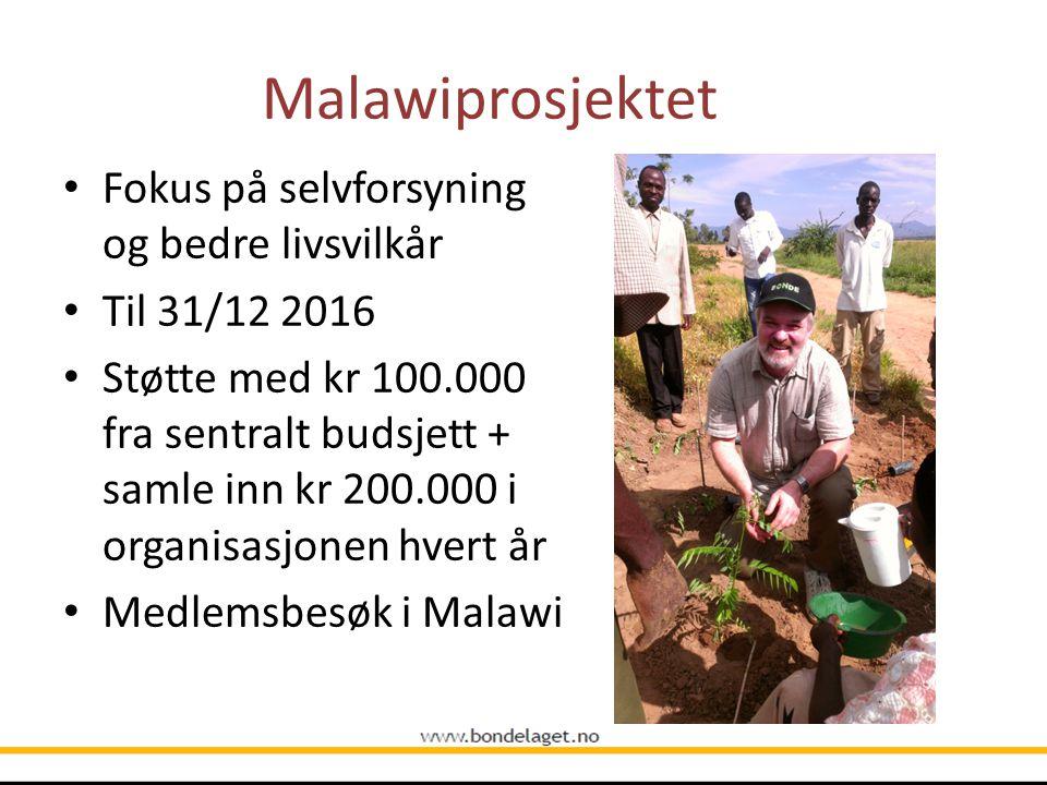 Malawiprosjektet Fokus på selvforsyning og bedre livsvilkår