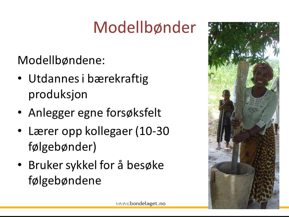 Modellbønder Modellbøndene: Utdannes i bærekraftig produksjon