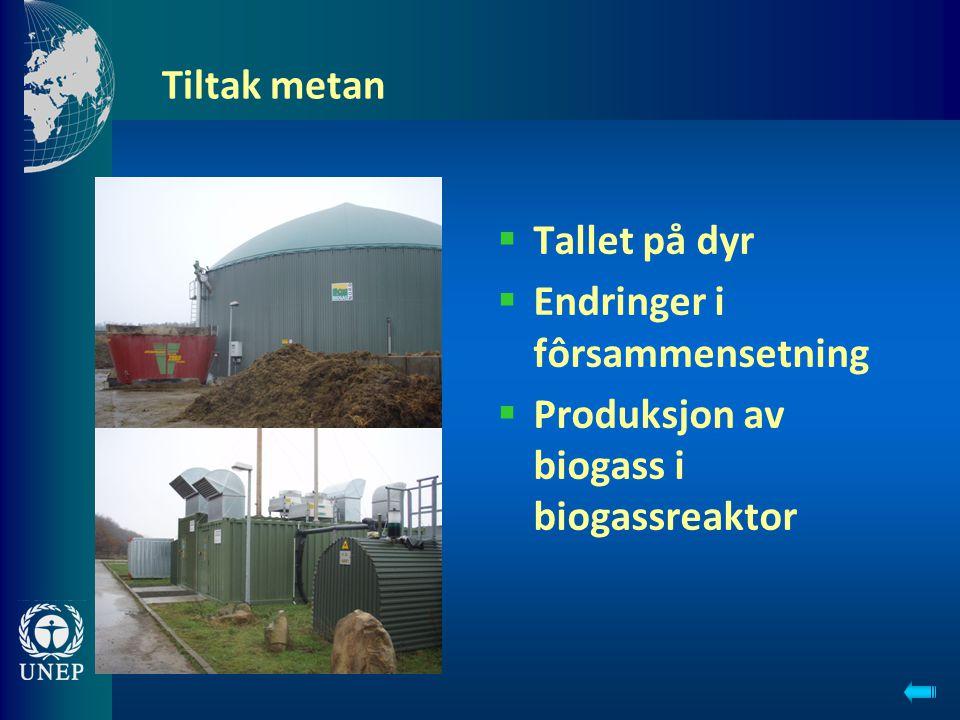 Endringer i fôrsammensetning Produksjon av biogass i biogassreaktor