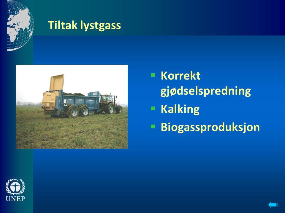 Korrekt gjødselspredning Kalking Biogassproduksjon