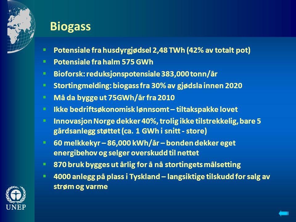 Biogass Potensiale fra husdyrgjødsel 2,48 TWh (42% av totalt pot)