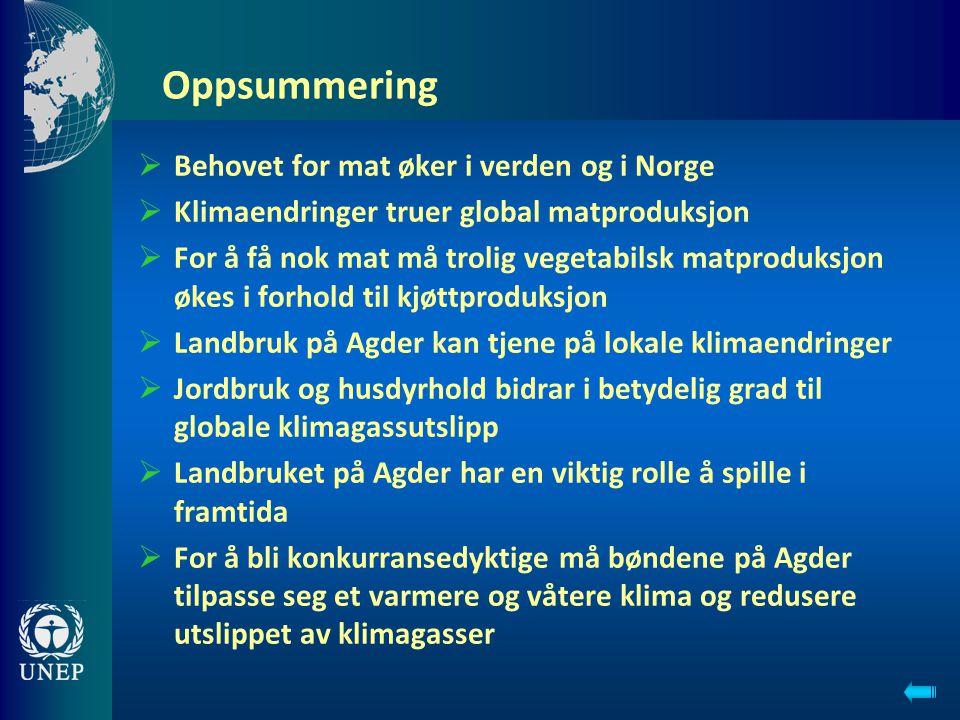 Oppsummering Behovet for mat øker i verden og i Norge