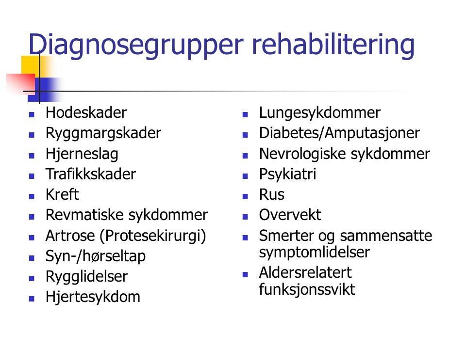 Diagnosegrupper rehabilitering