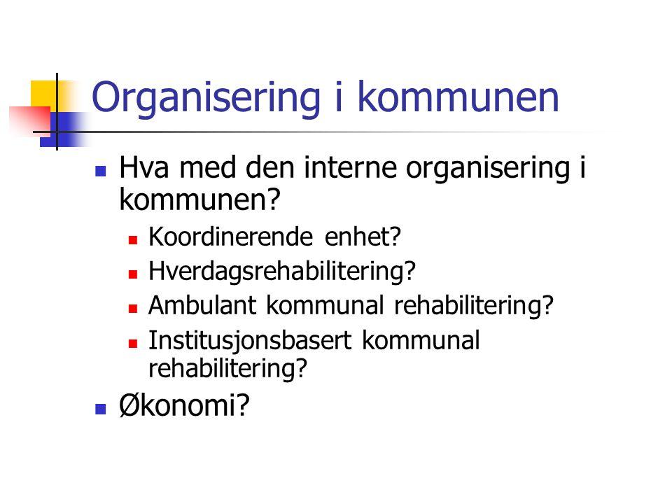 Organisering i kommunen