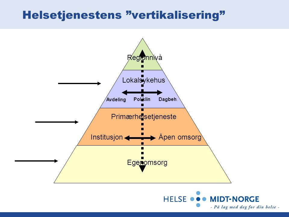 Helsetjenestens vertikalisering
