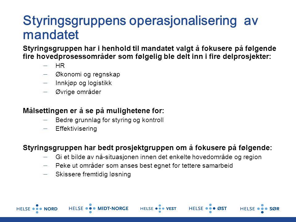 Styringsgruppens operasjonalisering av mandatet
