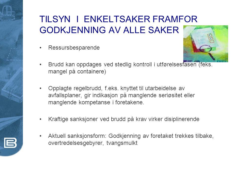 TILSYN I ENKELTSAKER FRAMFOR GODKJENNING AV ALLE SAKER