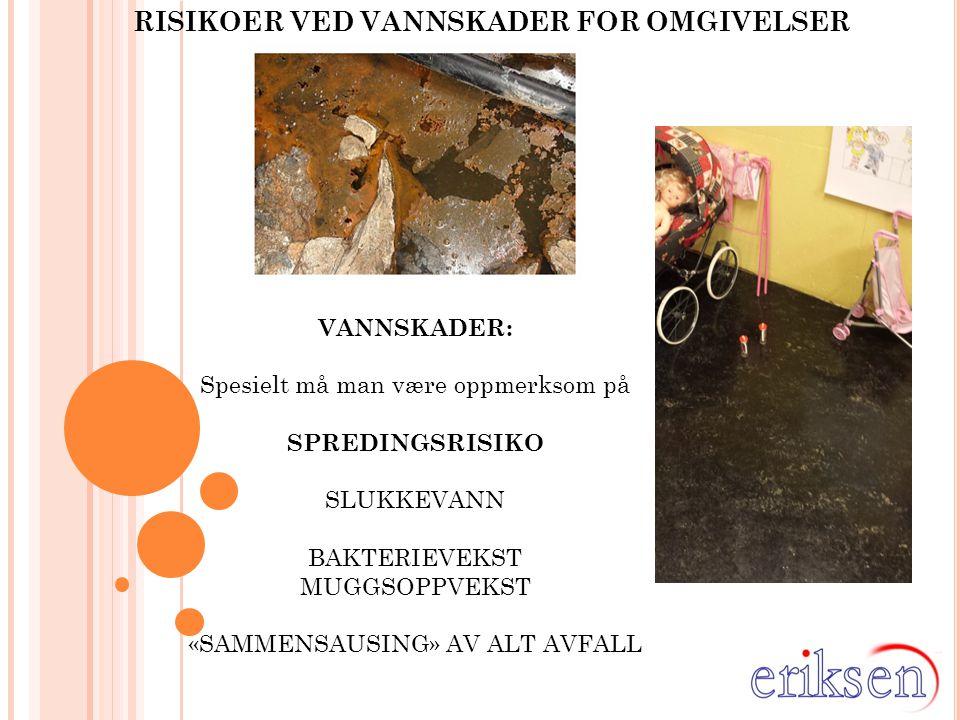 RISIKOER VED VANNSKADER FOR OMGIVELSER