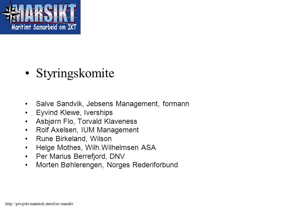 Styringskomite Salve Sandvik, Jebsens Management, formann